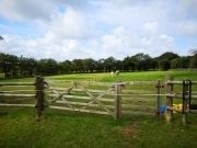 North Devon Holiday Cottage Horse paddocks you can walk through